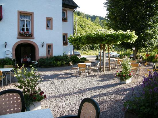 Gasthof zum Pflug: Part of garden