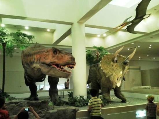 Niihama, Jepang: ティラノサウルスとトリケラトプス