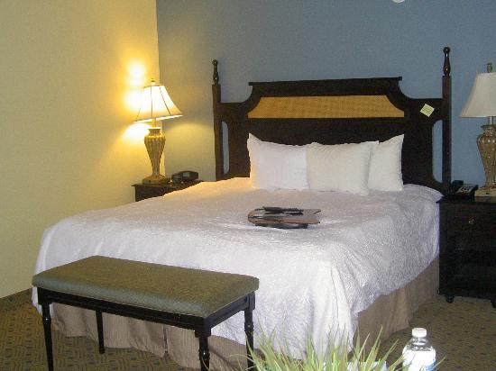 Hampton Inn Murrells Inlet/Myrtle Beach Area : Bed