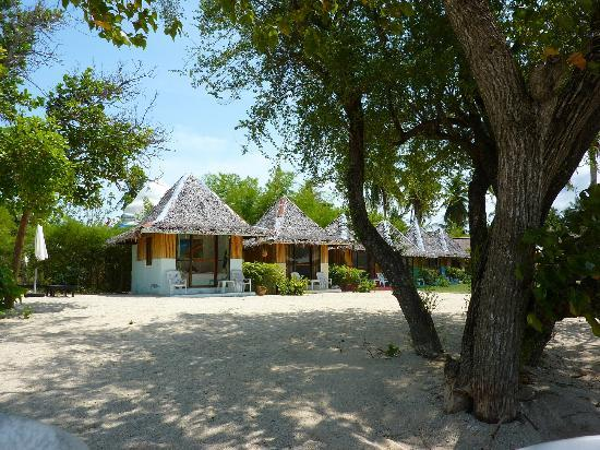 Sabaii Bay Resort: sat on the beach view of beach huts