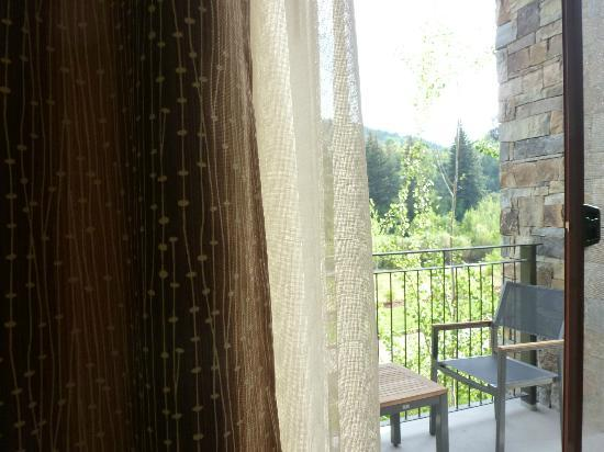 The Westin Riverfront Mountain Villas: View from my room - loved the curtains