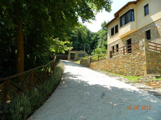 Vergopoulos Oliveyard: Εγκαταστάσεις