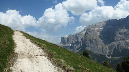 Hotel Garni Villa Park: On the track from Passo Sella