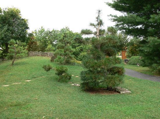 Mizumoto Japanese Stroll Garden: scenery in the path