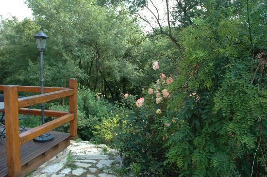 Chateauneuf de Grasse, Frankrike: le jardin