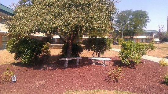 Quality Inn & Suites Conference Center: courtyard area