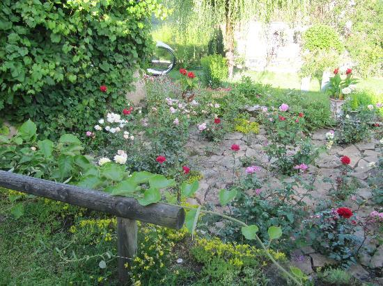 Hotel Taillard : jardin