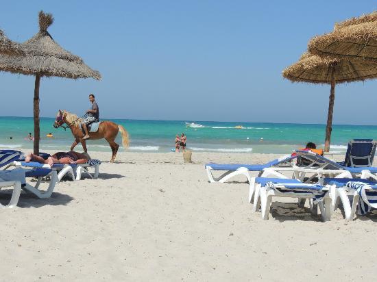 Fiesta Beach Club Djerba: plage