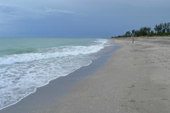 Hobe Sound Beach In The Morning