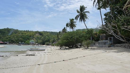 Assava Dive Resort: Beach