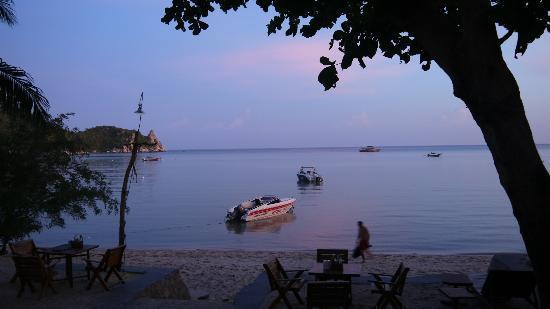 Assava Dive Resort: Beach view