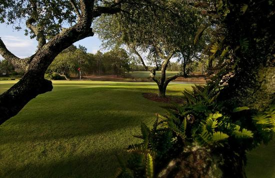 Beau Rivage Golf & Resort: Beau Rivage Golf Course No. 11