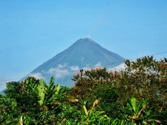 Cabinas la Catarata: Arenal Volcano View