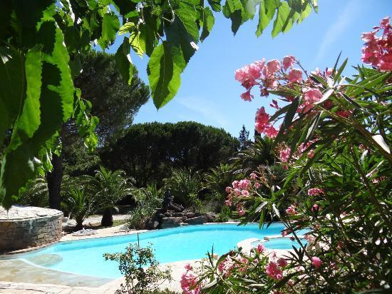 Villa Izamée : La piscine et ses plans de fleurs