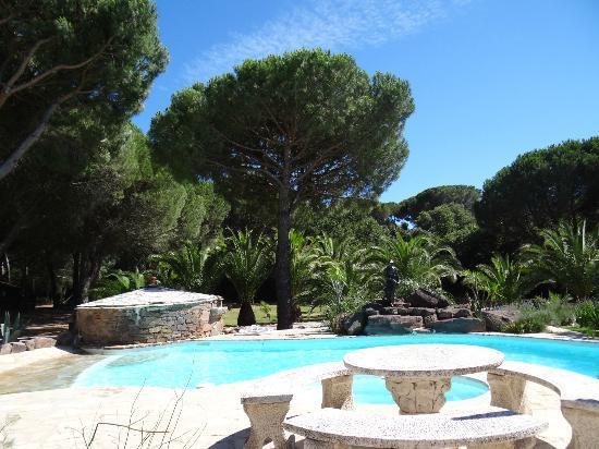 Villa Izamée : La piscine et sa table