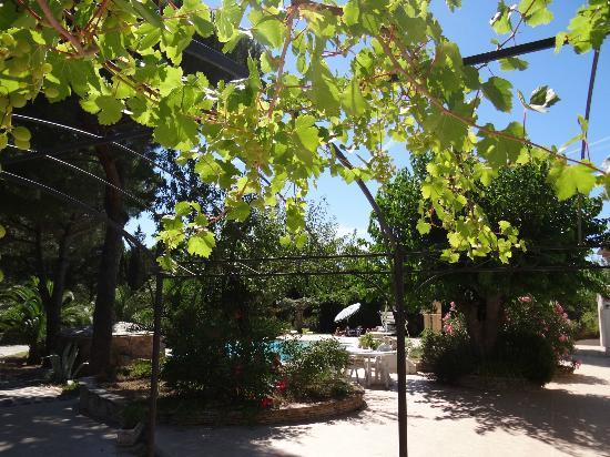 Villa Izamée : La maison d'hôtes et sa terrasse
