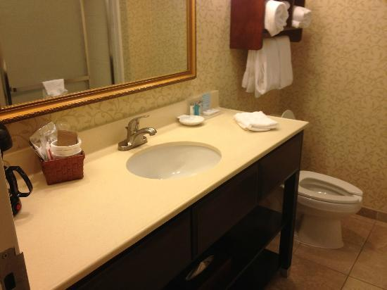 Hampton Inn Salisbury: Nice bathroom