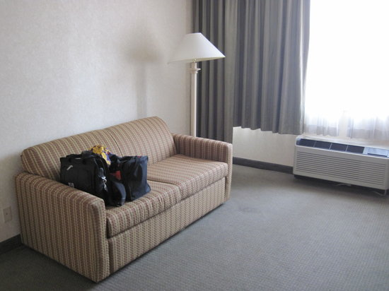 Comfort Inn Downtown: The couch in the living room