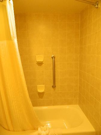 DoubleTree by Hilton Hotel Bay City - Riverfront: shower
