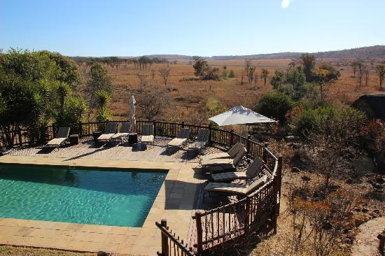 Kololo Game Reserve: Pool