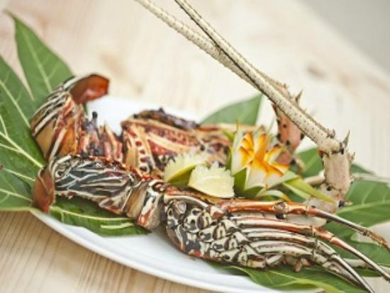 Stingray Beach Inn: Delicious  lobster made by our chef