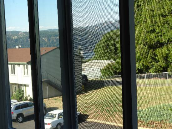 Riverview Lodge: view from window