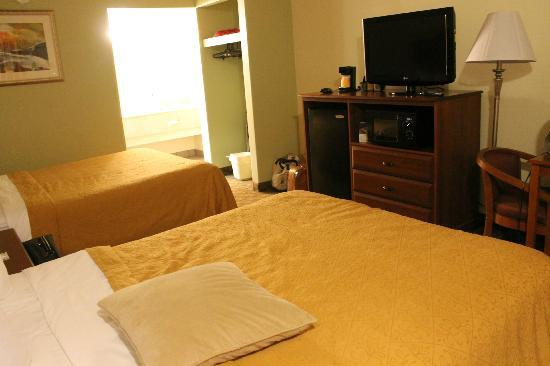Quality Inn & Suites at Dollywood Lane: standard room