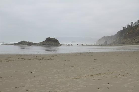 Shaw's Oceanfront B&B : walking towards Hug Point