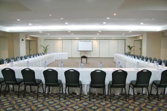 W&P Santo Domingo: Salón de Conferencias