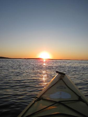 Aquaterra Adventures: 2 hour sunset tour