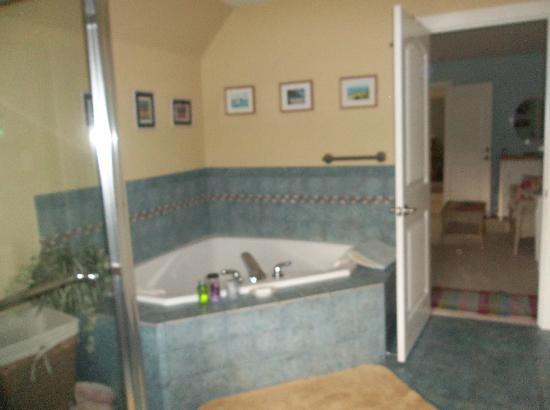 Hilltop Hideaway Bed and Breakfast : Corner Jacuzzi Tub / Tropical Suite