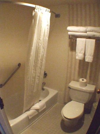 Best Western Plus Twin Falls Hotel: 2. Bathroom