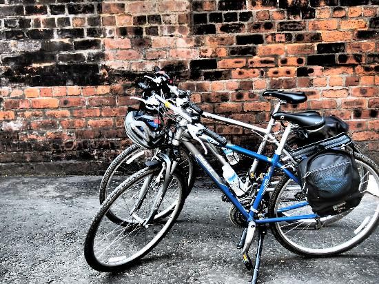 2 Wheel Tours-Day Tours: The rental bikes. Fully equipped with a helmet, pannier bag, spare inner tube, pump and multi-to