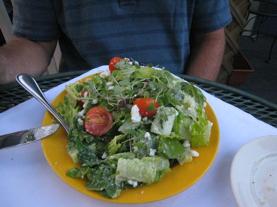 Blue Moose Restaurant & Cafe : Ceasar Salad