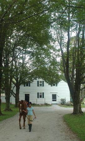 The Inn at Richmond: Berkshire Equestrian Center on property