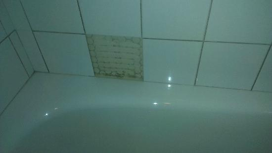 The Meadows Hotel: tiles missing in bathroom
