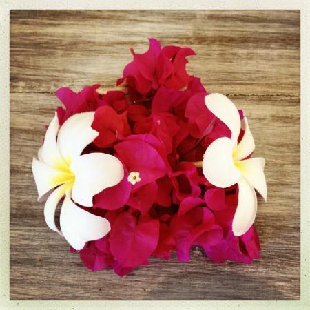 Al Hamra: Flowers