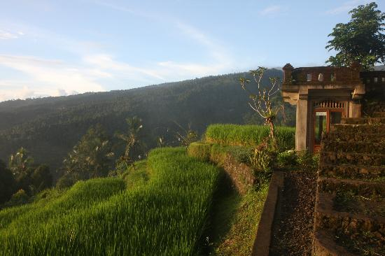 Puri Lumbung Cottages: Sunset