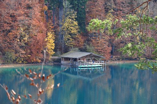 Schloss Neuschwanstein: Lago no caminho do castelo de Hohenschwangau