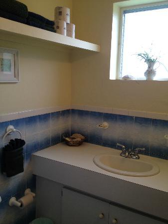 The Green Iguana Hotel: En-Suite Bathroom 