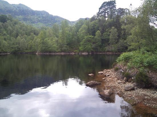 The Hairy Coo: Loch Katrine