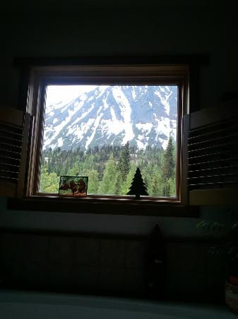 Stevenson Retreat: VIEW FROM THE BATHTUB....REALLY???  REALLY!!!!!