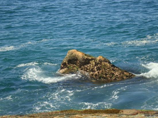 Praia do Cachadaco: Trindade-praia do meio