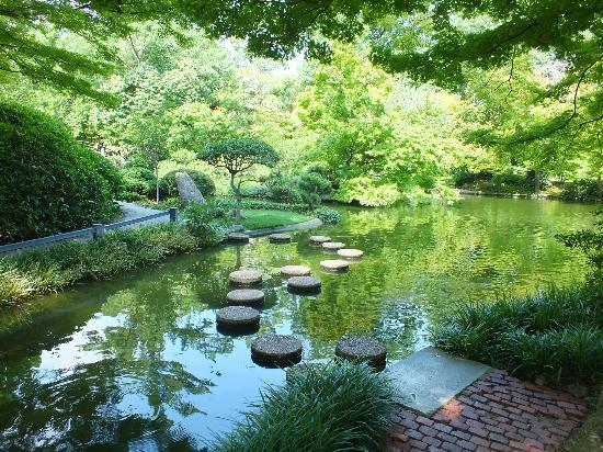 stepping stones across the pond - Picture of Fort Worth Botanic ...