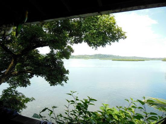 Tripadvisor Bocas Del Toro Panama: The Garden Of Eden, Bocas Del Toro, Panama