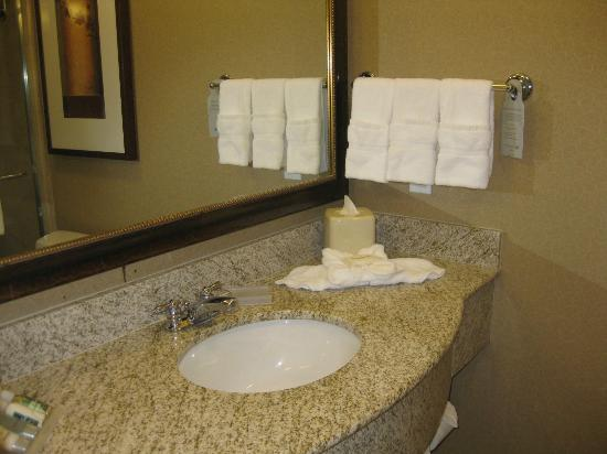 Hilton Garden Inn Salt Lake City Downtown: Bathroom