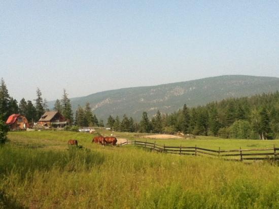 Silverspring Ranch: ranch