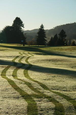 Rotorua Golf Club - Arikikapakapa Course: Frosty May morning