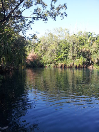 Berry Springs Nature Park : Berry Springs