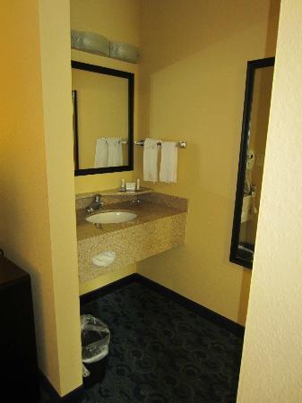 SpringHill Suites Jacksonville Airport : Bathroom